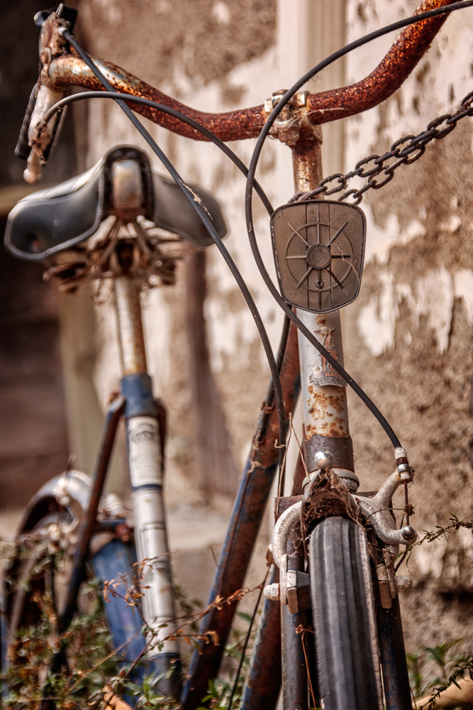 Abandoned Bicycle in Harmony | California