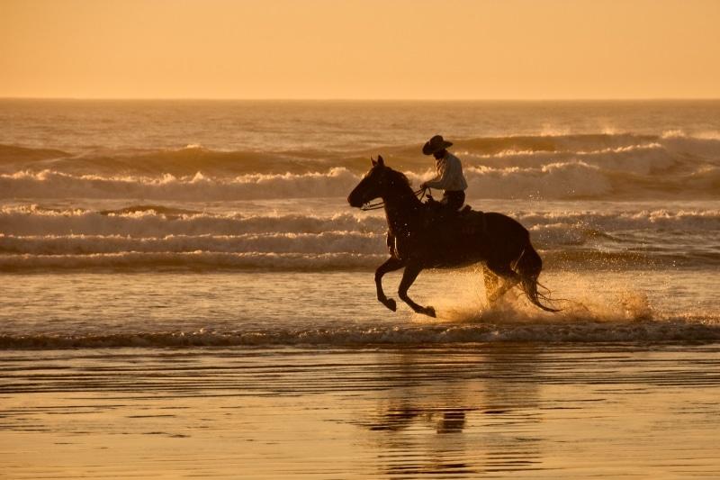 Cowboy Horsebackriding on the Beach at Sunset | Morro Strand State Beach | Morro Bay | California