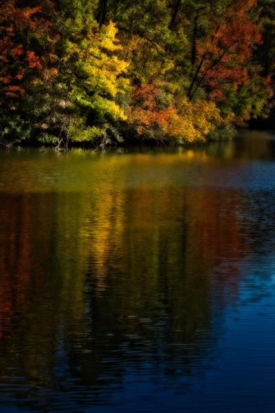 Fall Colors on Lake Maury | Newport News | Virginia