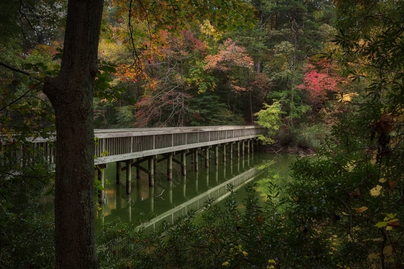 Fall Colors | Mariner's Park | Newport News | Virginia