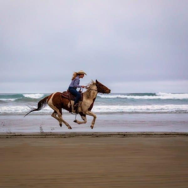 Horses on the Beach | Morro Strand State Beach | California