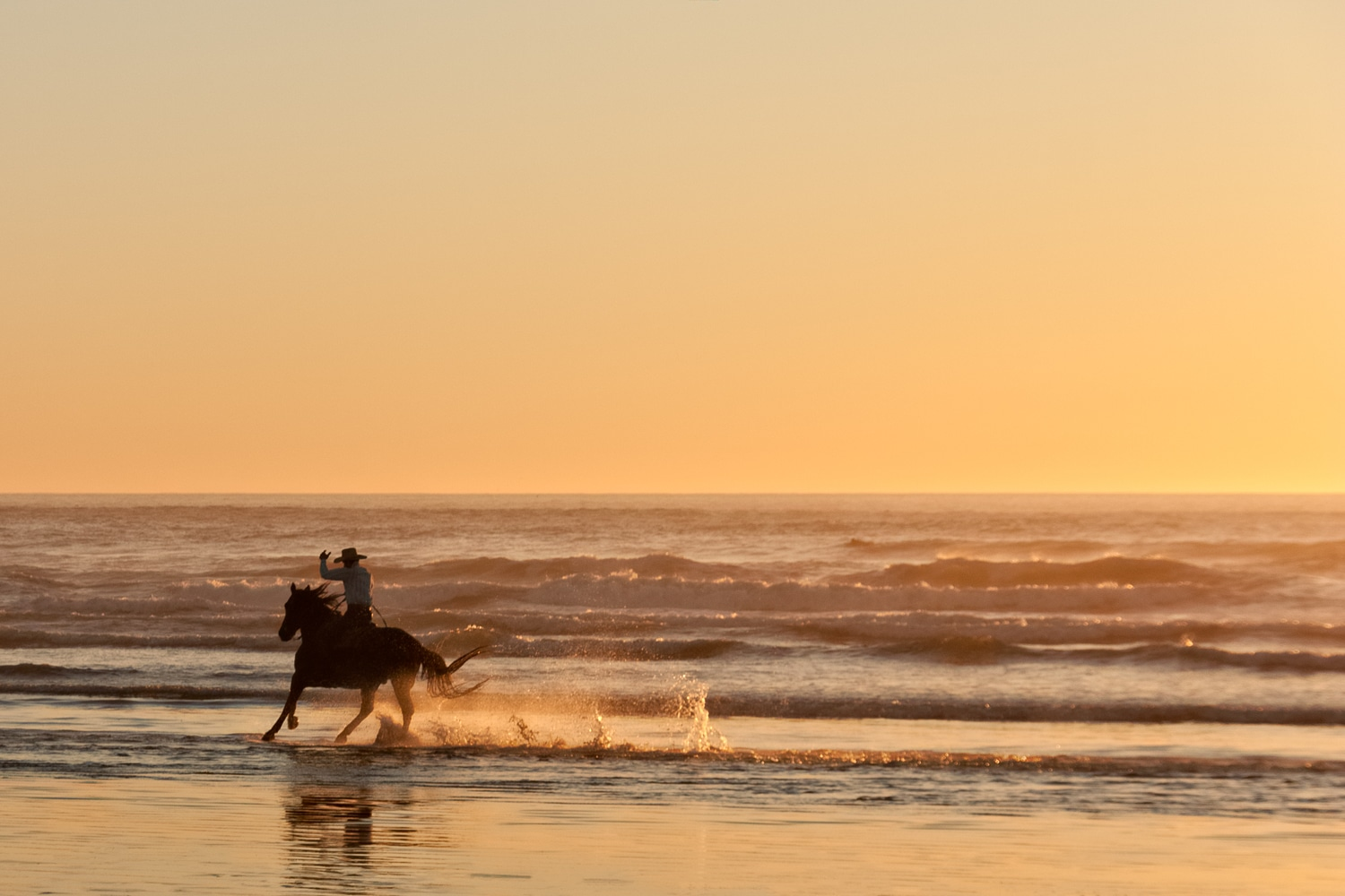 Cowboy Horsebackriding on the Beach at Sunset | Morro Strand State Beach | Morro Bay | California
