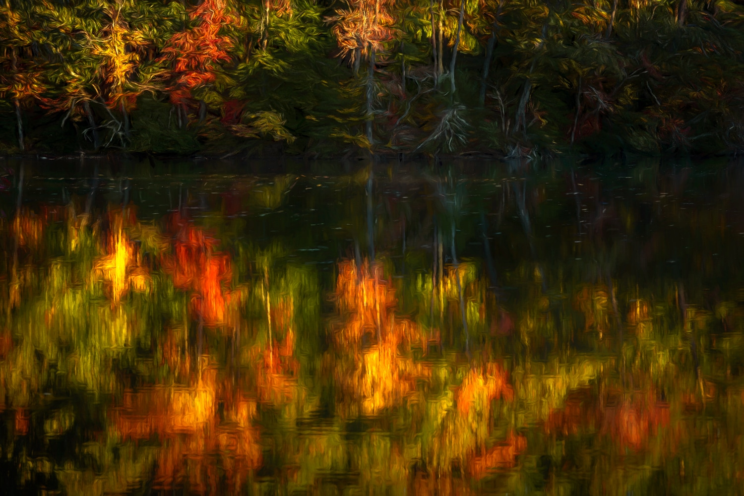 Fall Color Reflections | Newport News | Virginia