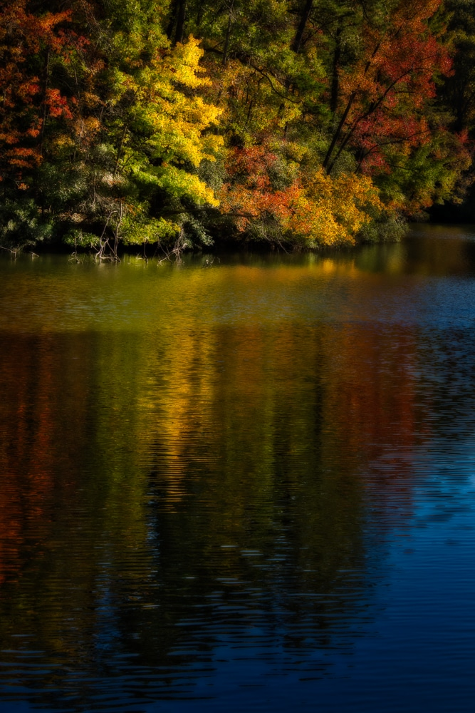 Fall Colors on Lake Maury | Newport News | Virginia