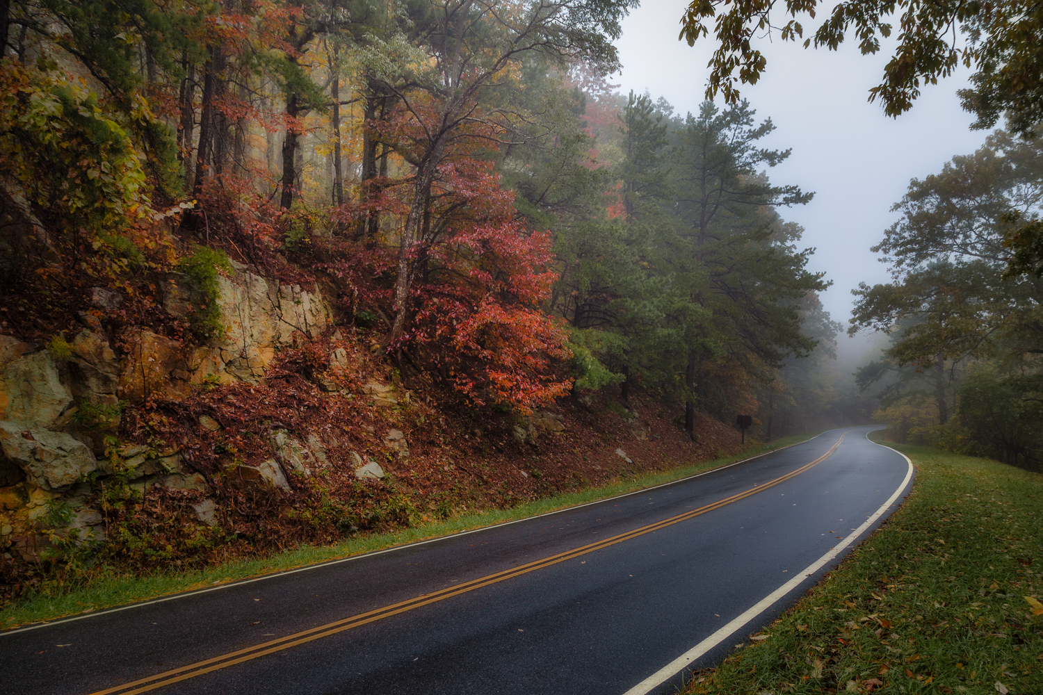Fall Colors on a Foggy Morning | Skyline Drive | Shenandoah National Park | Virginia