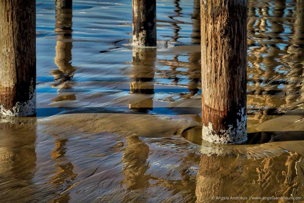 Pier Piling Detail | Pismo Beach, CA
