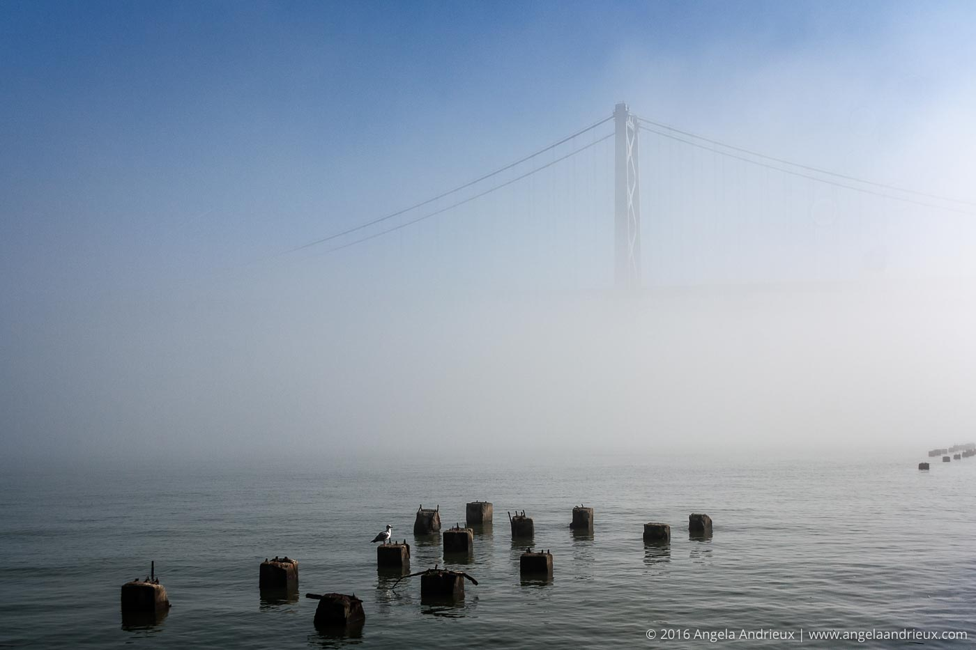 Foggy San Francisco Bay and Bay Bridge