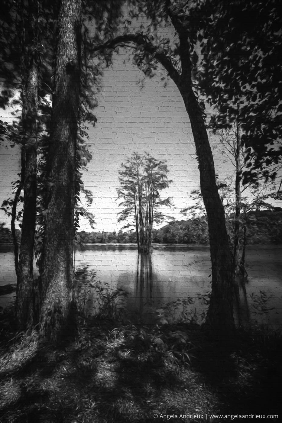 Stumpy Lake   Processed with Topaz Impression 2