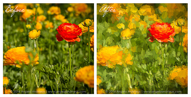Carlsbad_Flower_Fields_Topaz_Impression-before-after-comparison