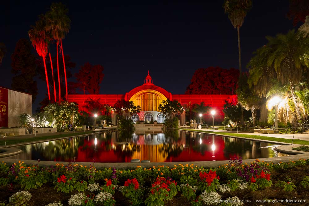 balboa-park-san-diego-night-holiday-lights-4