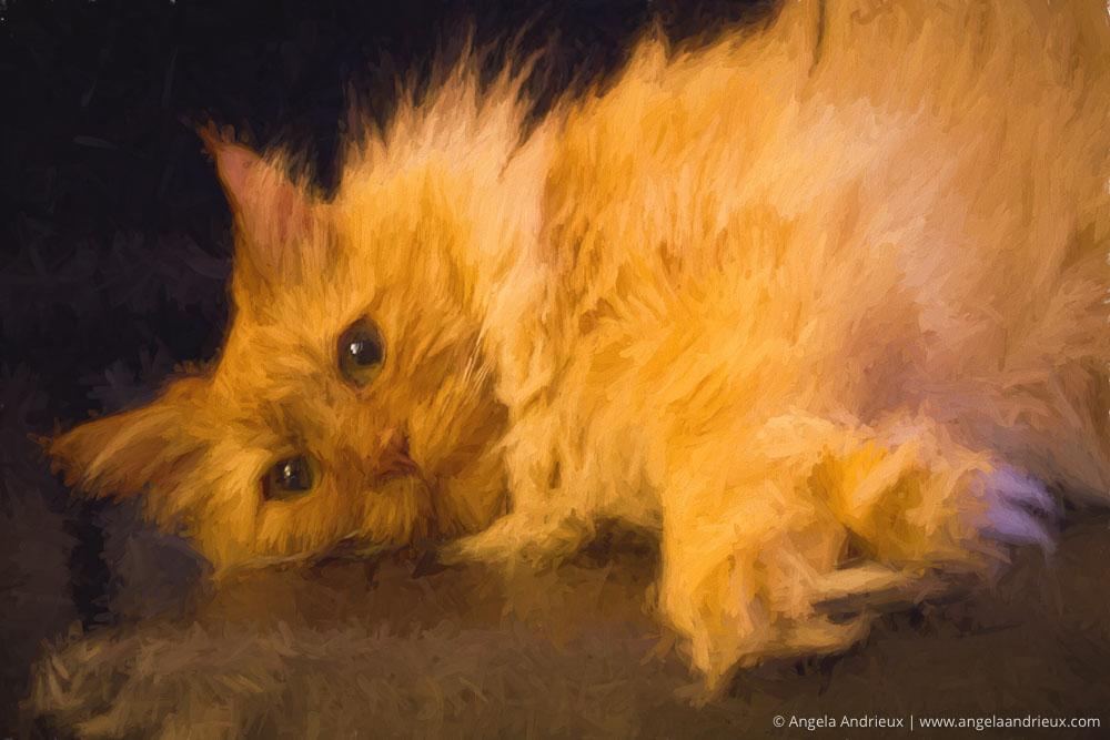 pumpkin-lazy-cat-topaz-impression