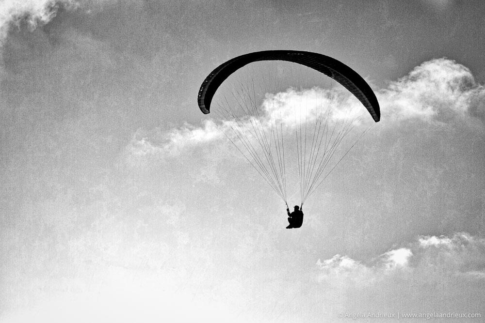 Paraglider | Torrey Pines Gliderport | La Jolla, CA