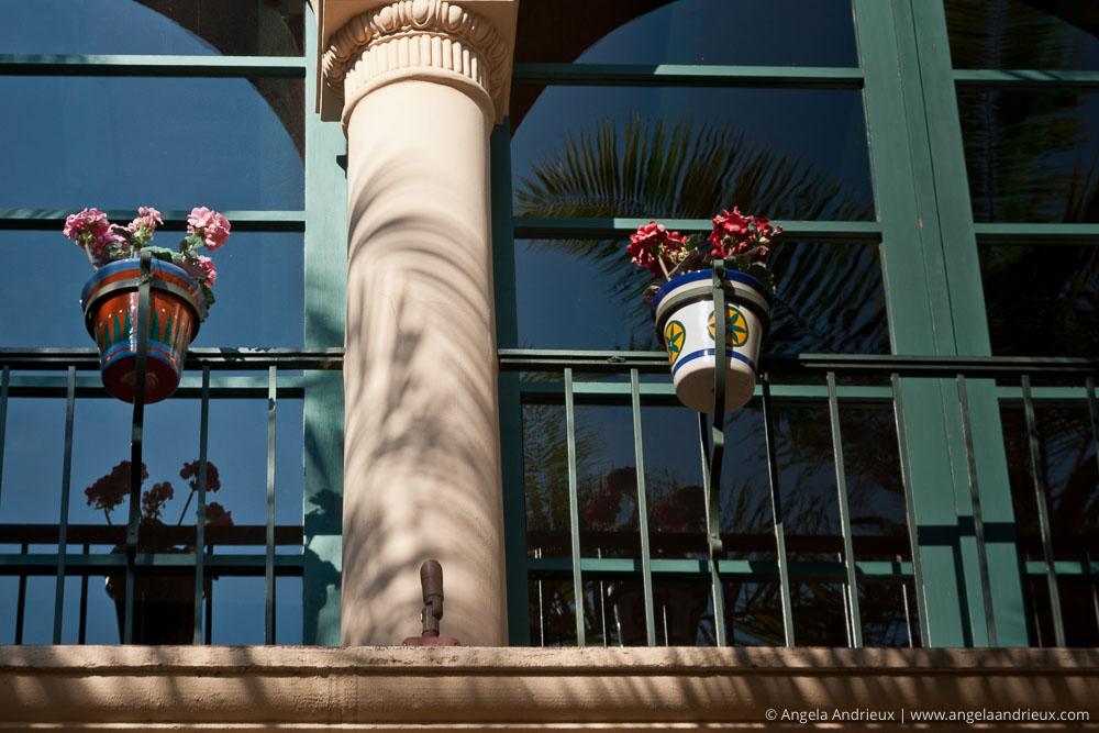 Flowering Plants on a Balcony with Window Reflections | Balboa Park | San Diego, CA | Scott Kelby Worldwide Photo Walk 2011