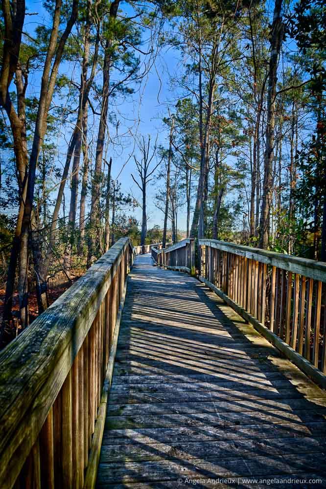 Great Bridge Battlefield | Chesapeake, VA | Aurora HDR 2017