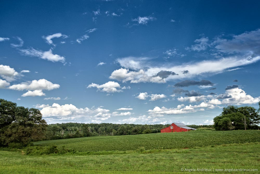 Red Barn | Rosemont Vineyards | LaCrosse, VA