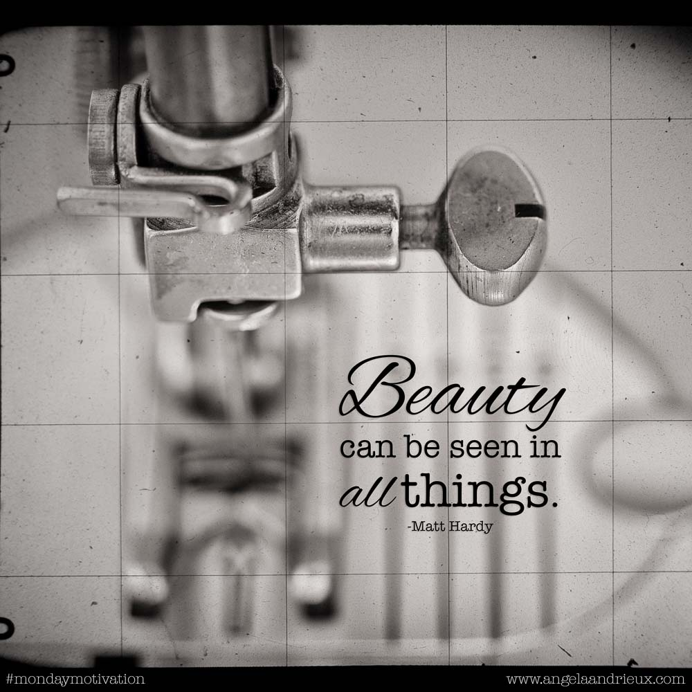 """Beauty can be seen in all things."" -Matt Hardy"