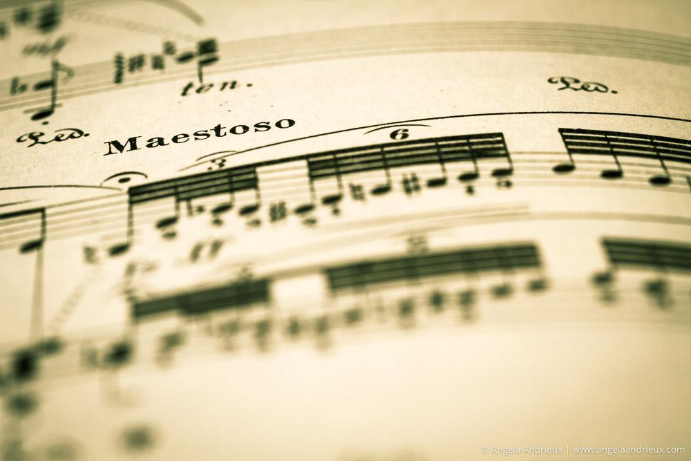 Modern Music | Vintage Exploration