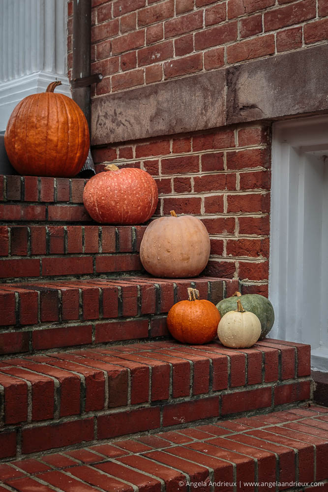 Pumpkins on Brick Steps | Freemason District | Norfolk, VA | Worldwide Photo Walk