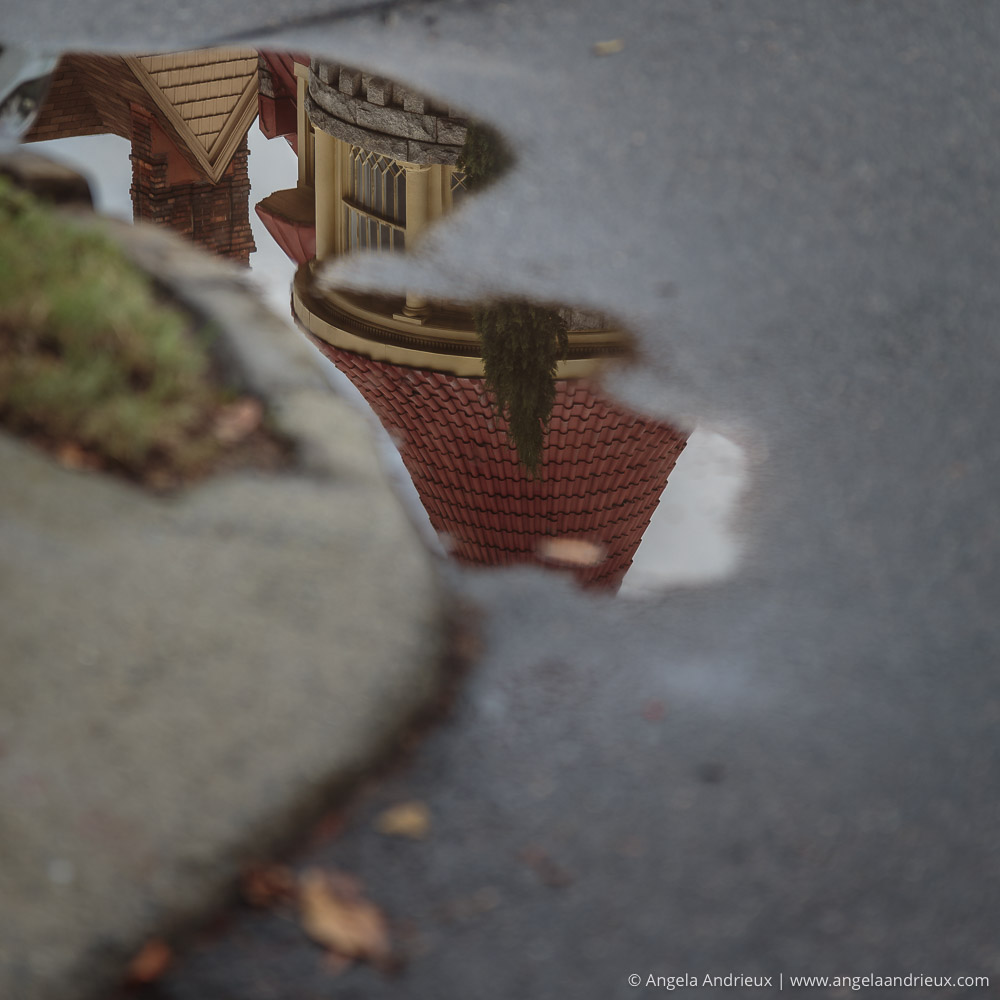 Victorian home reflected in a puddle | Ghent | Norfolk, VA | Worldwide Photo Walk