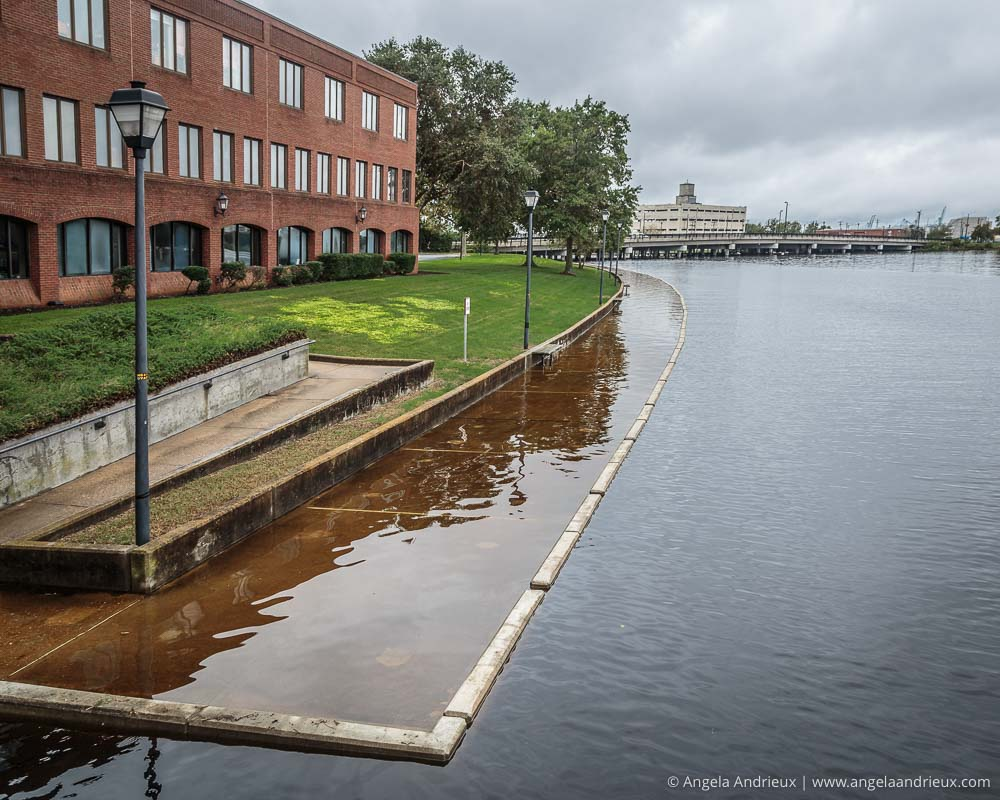 Flooded walkway along The Hague | Norfolk, VA | Worldwide Photo Walk