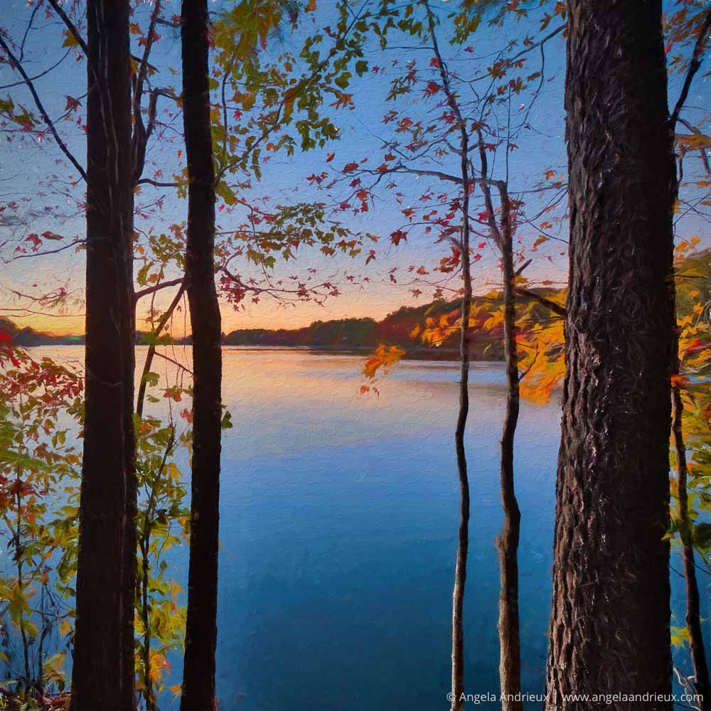 Fall Sunset   Oak Grove Lake Park   Chesapeake, VA