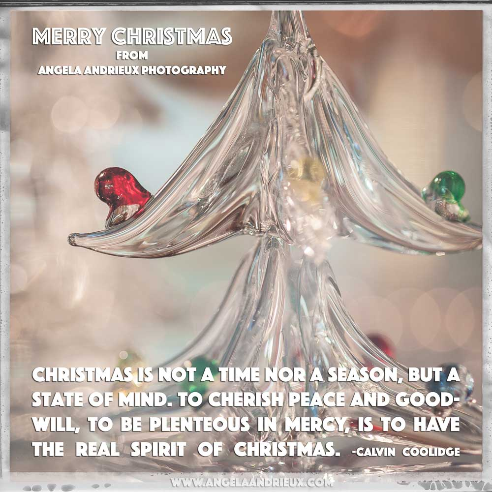 Merry Christmas | Glass Christmas Tree with Calvin Collidge Quote