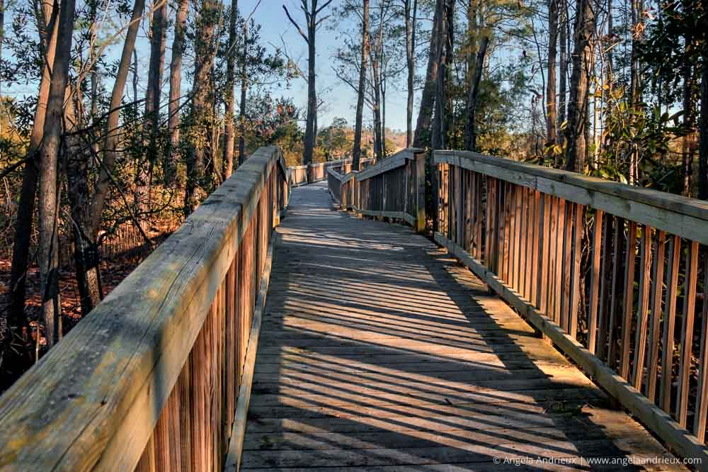 Walkway at the Great Bridge Battlefield Park | Chesapeake, VA
