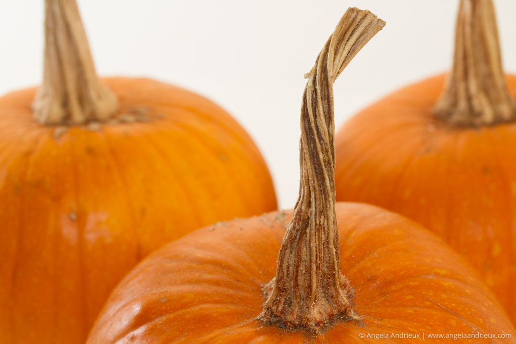 Closeup of a trio of pumpkins
