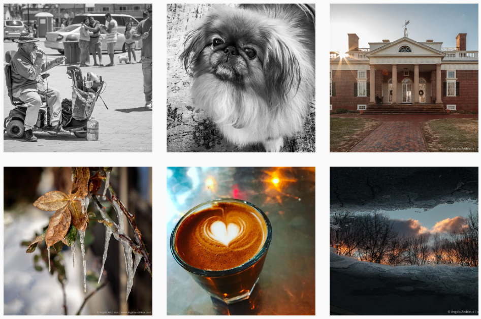 Recent photos from @angandrieux on Instagram