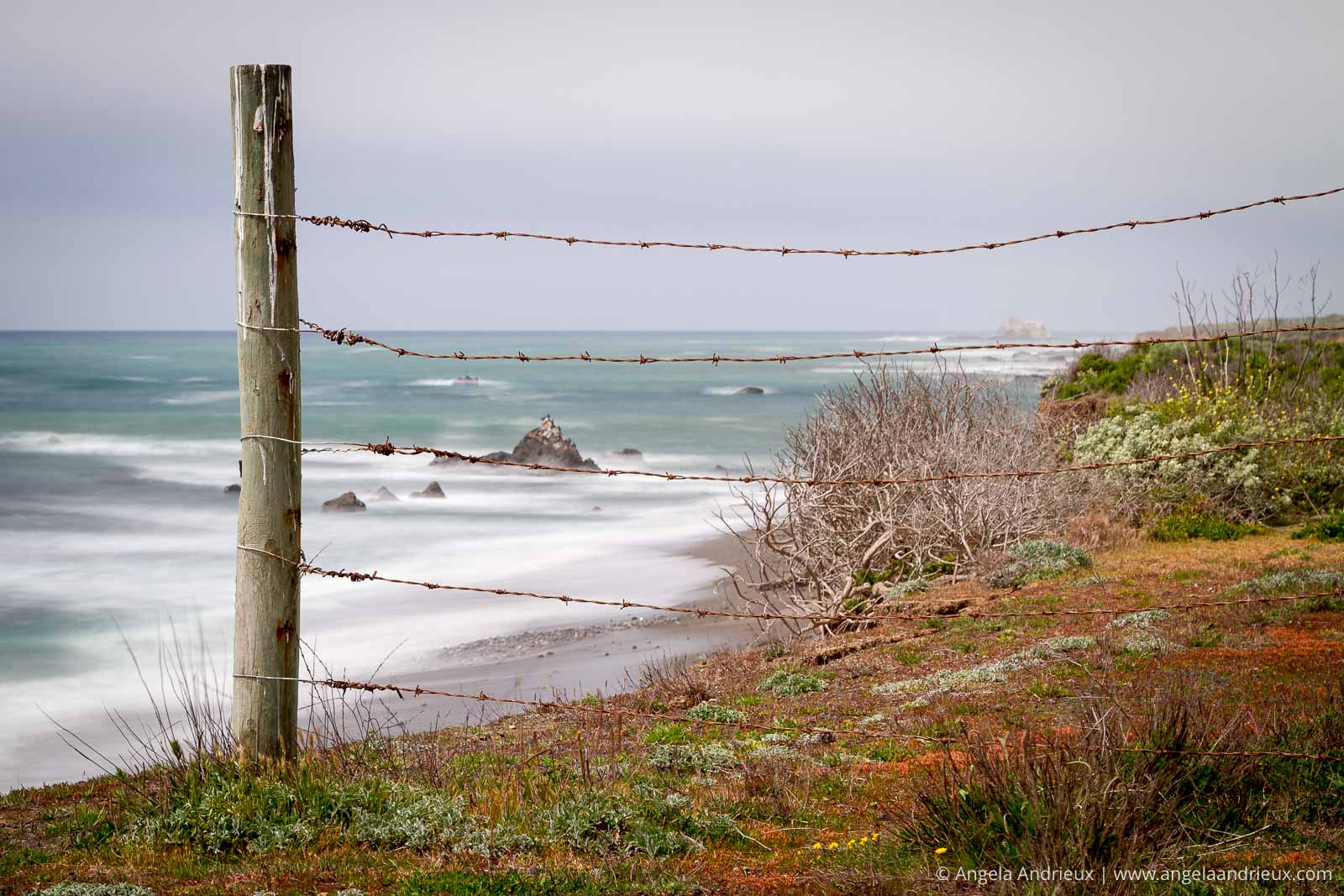Barbed Wire Fence ending on a bluff on the central coast of California