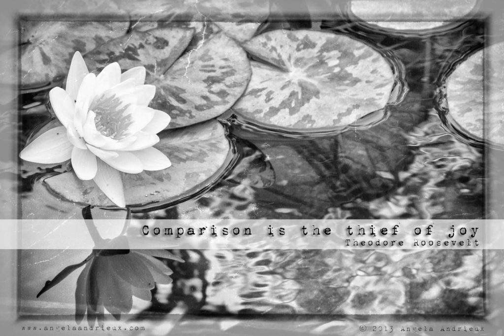"Photo of lily pads and lotus flower reflection and Theodore Roosevelt quote ""Comparison is the thief of joy."""