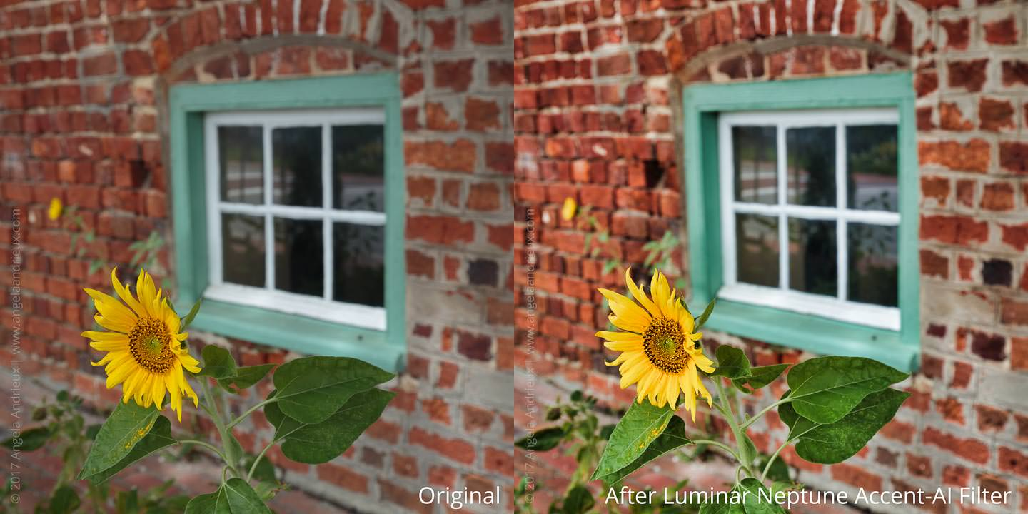 Before and After Luminar Neptune Accent-AI Filter