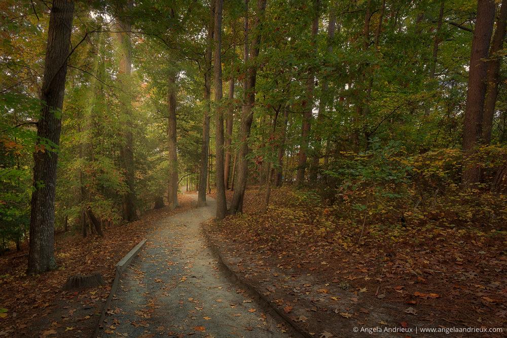 After Luminar 2018 | Fall Colors | Mariner's Park | Newport News | Virginia