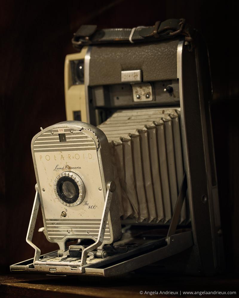 Polaroid Land Camera | The 800