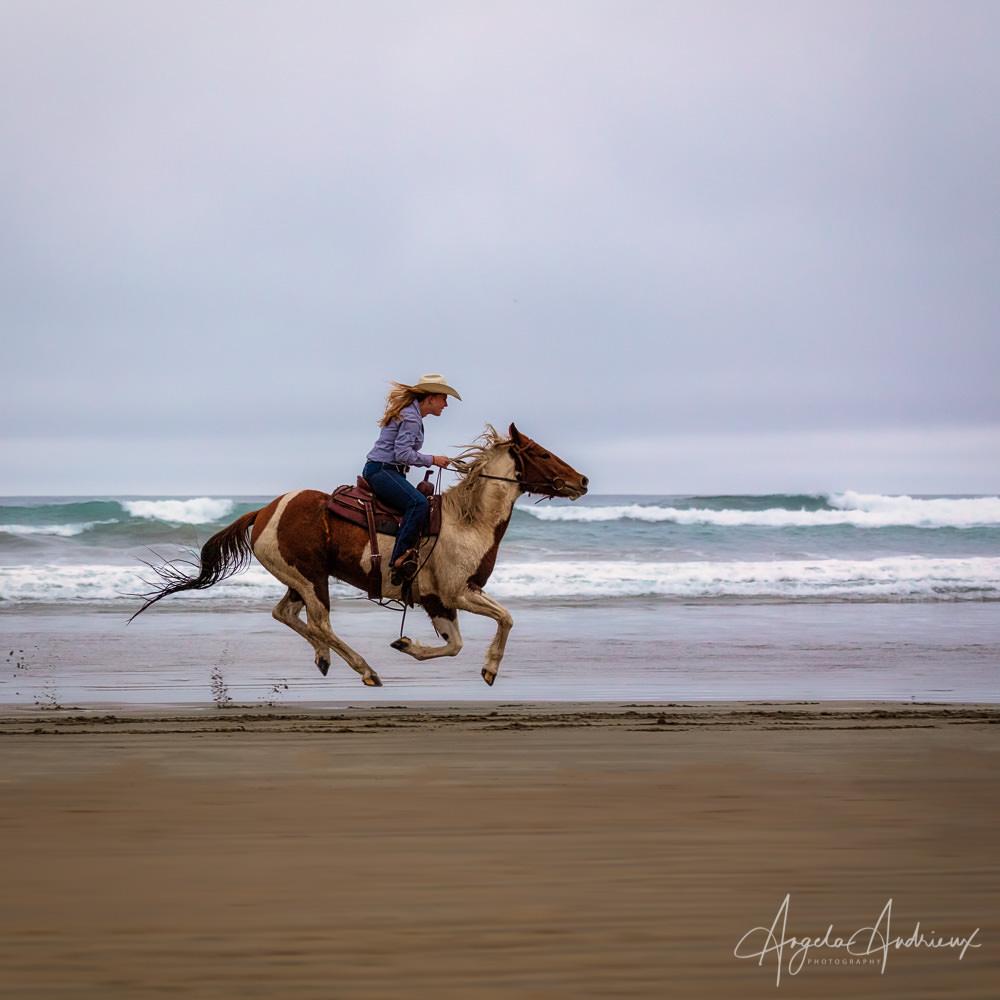 Horse and female rider on the beach in Morro Bay, California