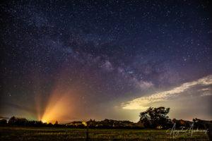 Milky Way | Edna Valley | California