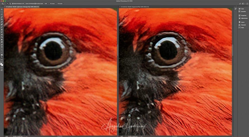 topaz a.i. gigapixel 2.0