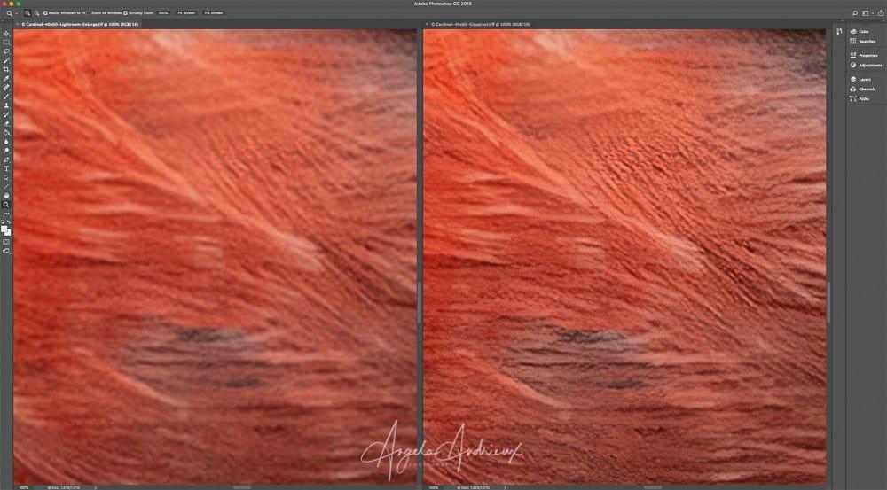 Intelligently Resize Photos with Topaz AI Gigapixel - Angela