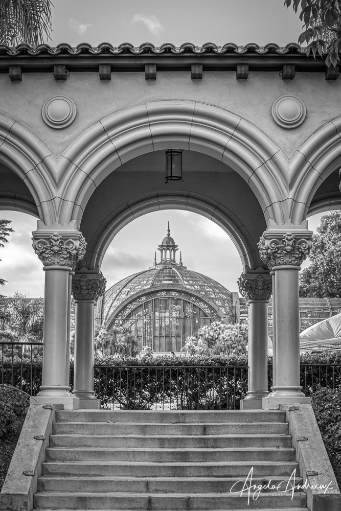 Balboa Park Botanical Building Black and White