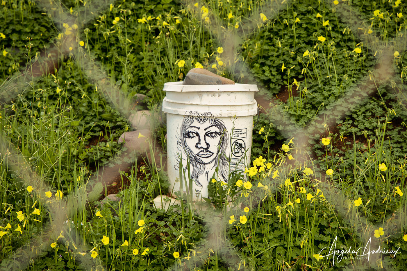 art on an abandoned bucket, captured through a chainlink fence