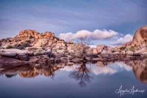 Blue Hour Sunrise at Barker dam