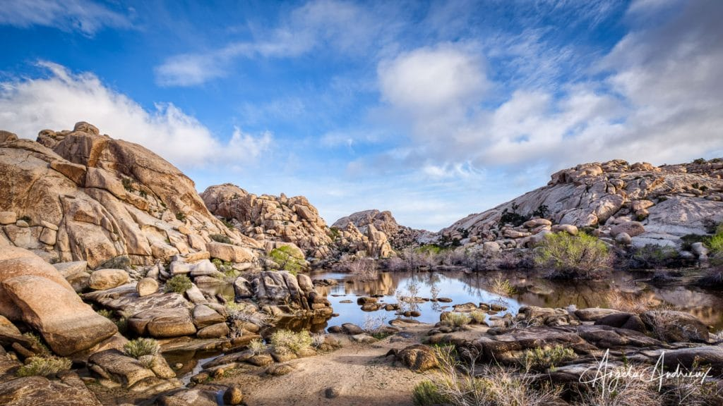 Greeting the day in Joshua Tree at Barker Dam