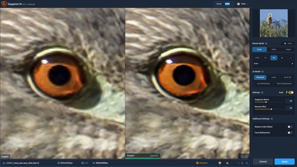 Before and after Topaz Gigapixel AI 4x Enlarge your photo